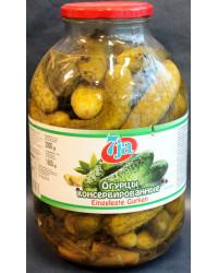 Cucumber 7ya